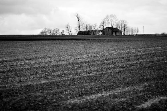 dark_countryside_by_themagilla-d4vkqxm